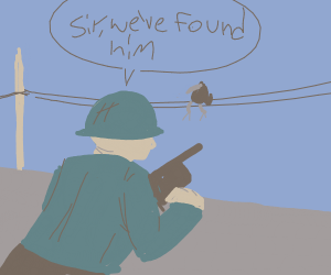 sniper aiming for a crow