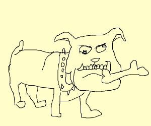 Crazy dog with a bone