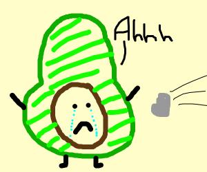 sad avocado got rock thrown at.