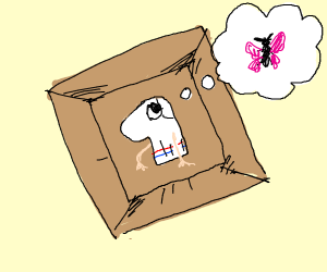 sock puppet in box thinking of butterfly