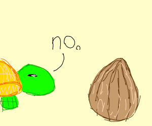 turtle says no to a FAT-NUT