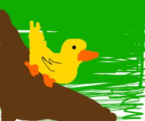 Duck in a Mudslide