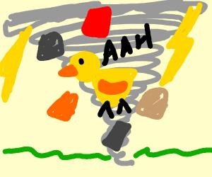 Duck trapped in a tornado