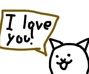 Cat loves you