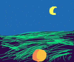 An orange in a field at night