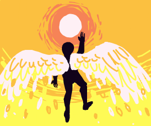 Fly flying into the sun like Icarus