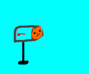 Cat stuffed into mailbox