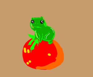 Little Frog on Tomato