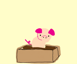 Bacons in a box.