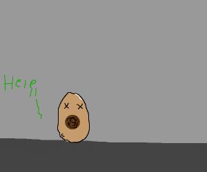 a very sick avocado