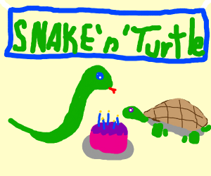 Snake and Turtle share the same birthday