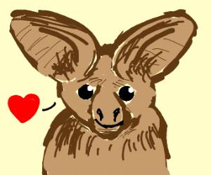 Smitten leaf-nosed bat