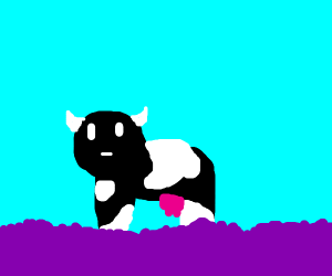 Brown cow in field of lavender