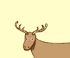 Moose with eyes coming out of its eyesockets