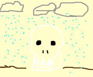 skull under hail