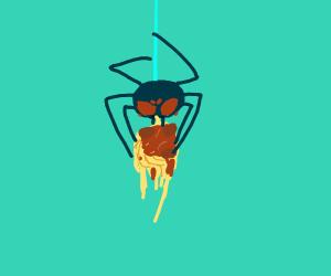 Spider eating spaghetti