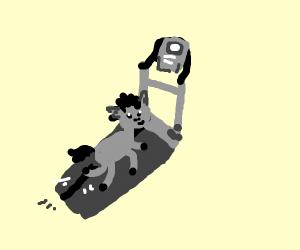 Donkey on a Treadmill.
