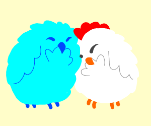 chicken and blue bird love each other