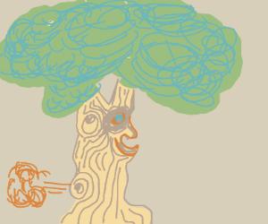 a bumpy tree passing gas