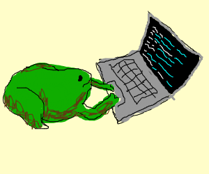 Toad Programmer
