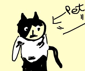 Pet Yeti