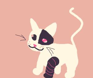 Cute Cyborg cat