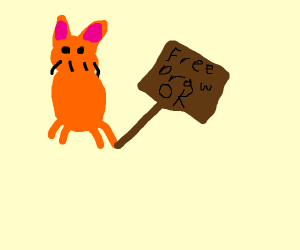 cat says free draw is ok with an ok sign