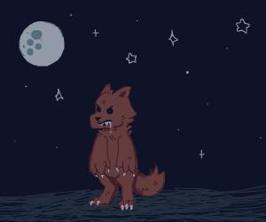 A mini werewolf