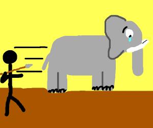 Sad elephant is hunted