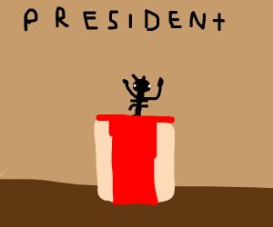 Ant runs for president.