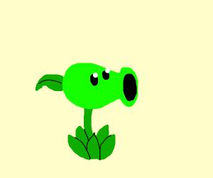 Pea plant plant vs zombies