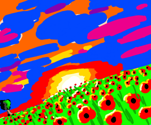 Vibrant field of poppies