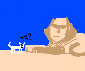 cat is confused by the sphinx