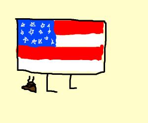 American flag poops