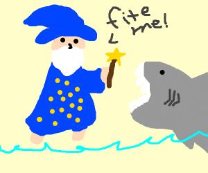 Wizard Vs Shark