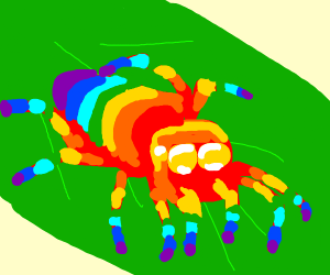 Cute Rainbow Spider