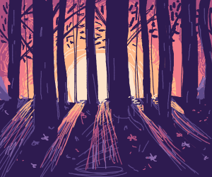 Sun rises on an expanse of purple forest