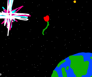 a rose in the galaxy