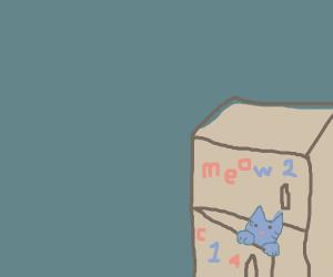 cat in fridge