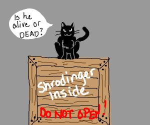 Shrodinger's cat gets revenge on Shrodinger