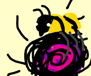bees carry a black hole