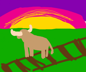 An ox on the train tracks at dawn.