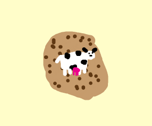 COW PRINT ON A COOKIE