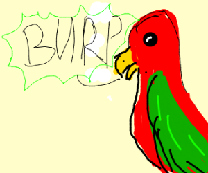 Parrot Burping