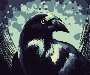 Snazzy crow