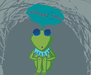 Kermit finally snaps