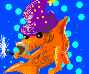 fish wizard