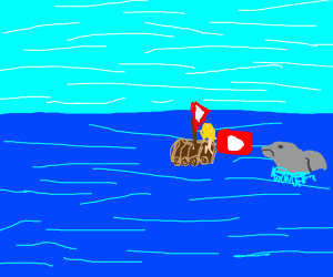 Woman drops Youtube on an unfortunate dolphin