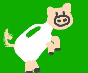 Milkpigs