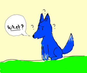 Confused blue fox